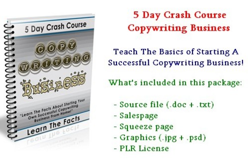 Product picture 5 Day Crash Course - Copywriting Business - With PLR