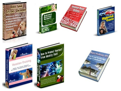 Product picture 7 PLR Niches - Webmaster Package